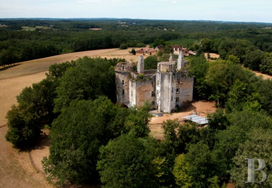 Ruined Castle For Sale In Dordogne France