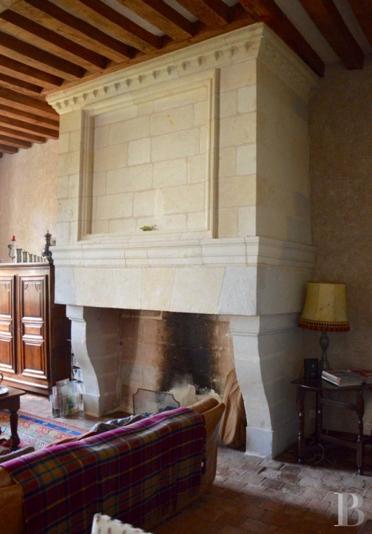 France mansions for sale pays de loire 17th century - 6