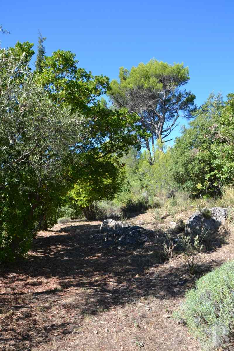 character properties France provence cote dazur moyen var - 3 zoom