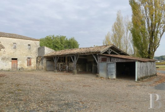 ruins for sale France aquitaine bordeaux vineyard - 11