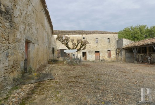 ruins for sale France aquitaine bordeaux vineyard - 2