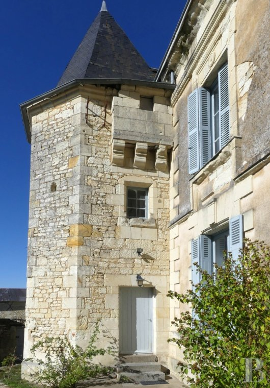 character properties France poitou charentes buy purchase - 3 mini