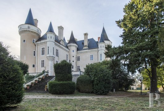 chateaux for sale France center val de loire   - 2