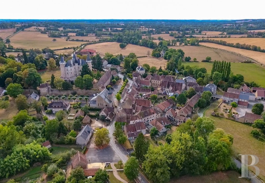 chateaux for sale France center val de loire   - 15