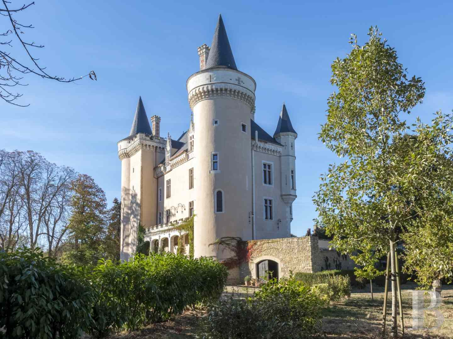 chateaux for sale France center val de loire castles chateaux - 4 zoom