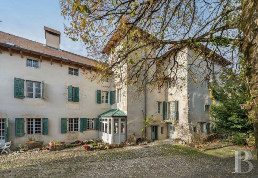 chateaux for sale France rhones alps castles chateaux - 2