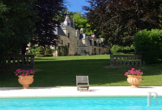 chateaux for sale France pays de loire   - 16