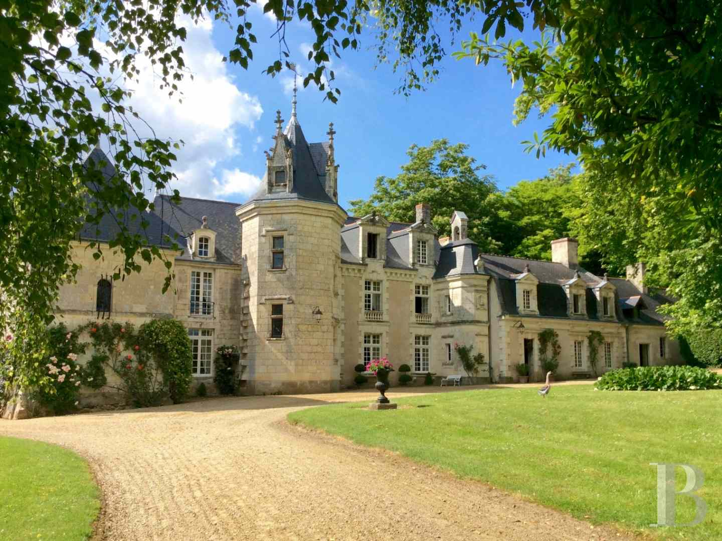 chateaux for sale France pays de loire 3696  - 1 zoom