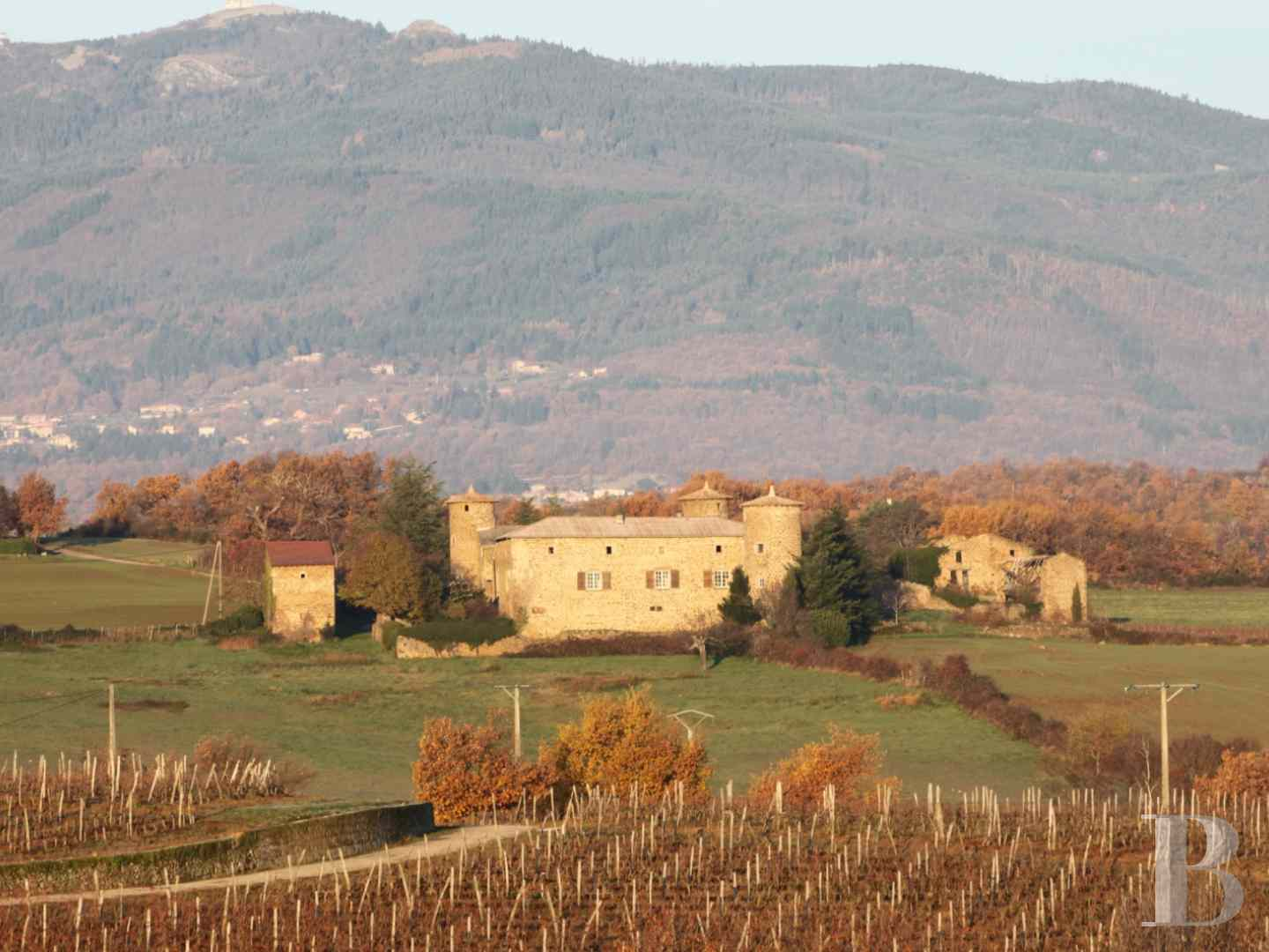 chateaux for sale France rhones alps ardeche medieval - 19 zoom