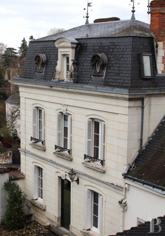 mansion houses for sale France center val de loire   - 2