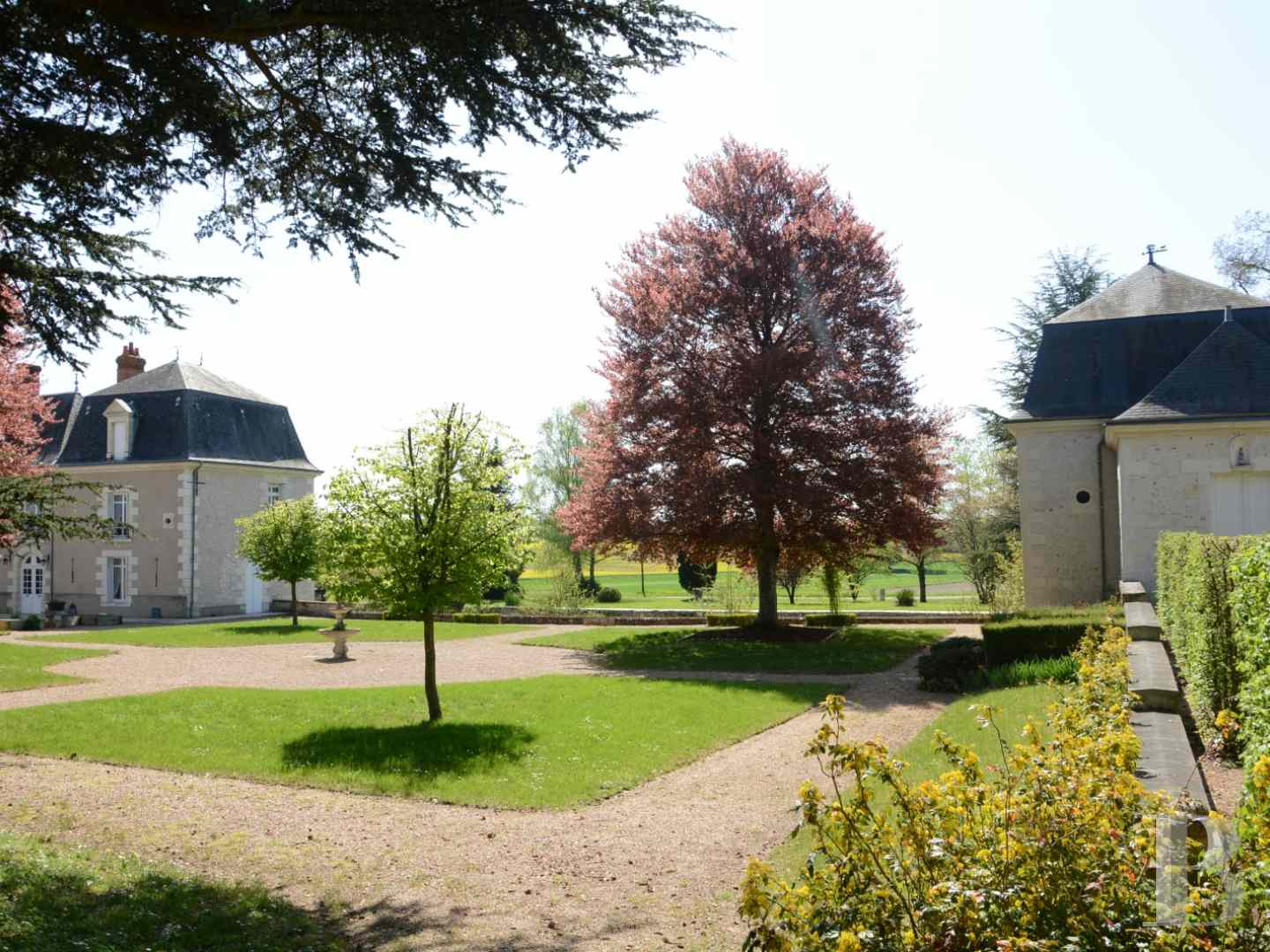 property for sale France center val de loire hunting grounds - 4 zoom