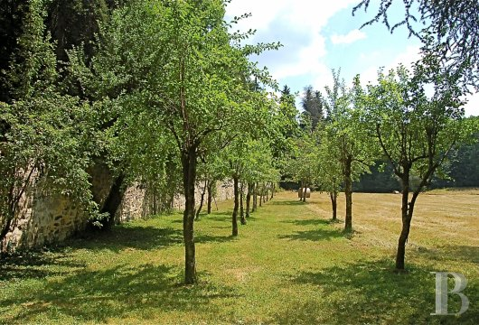 property for sale France limousin   - 25