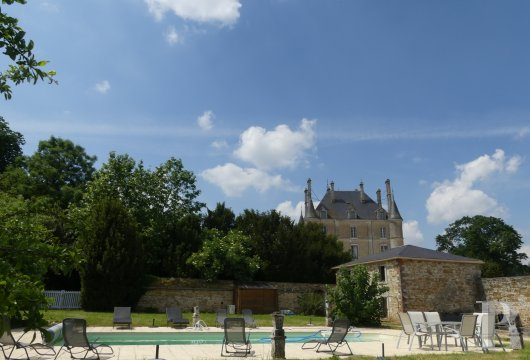 chateaux for sale France pays de loire   - 11