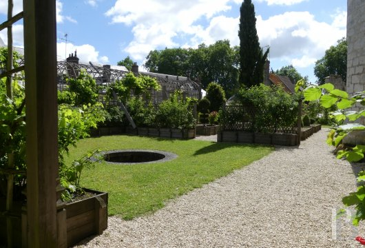 chateaux for sale France center val de loire   - 21