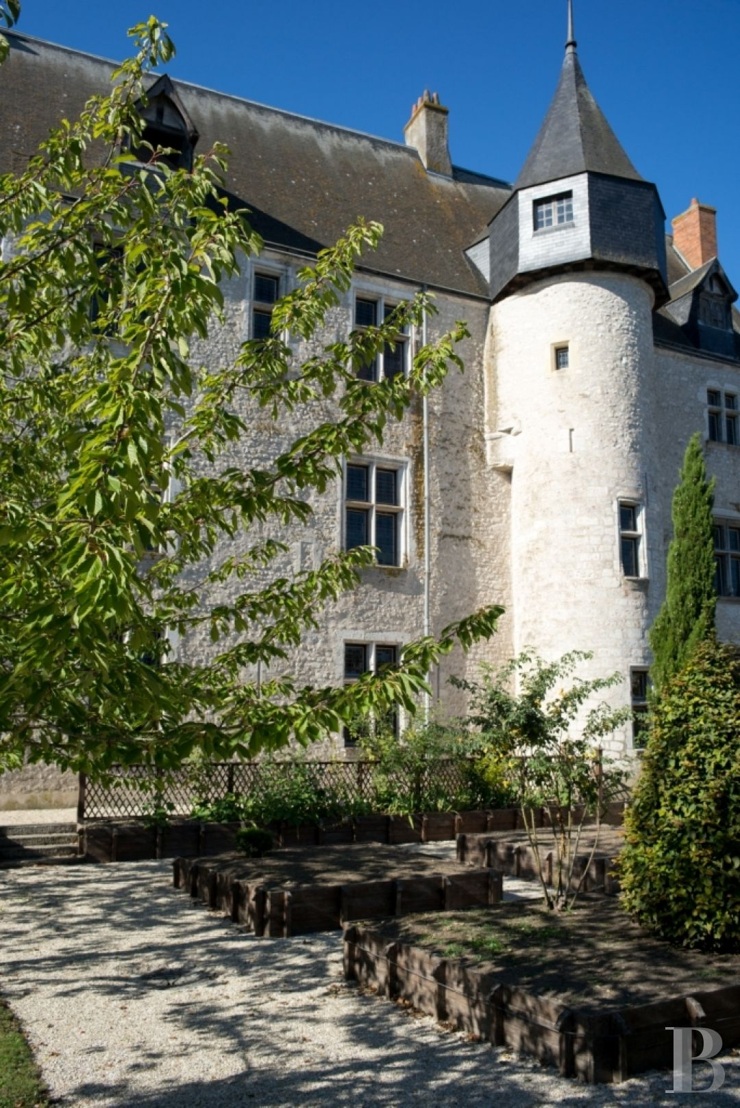 chateaux for sale France center val de loire castles chateaux - 3 zoom