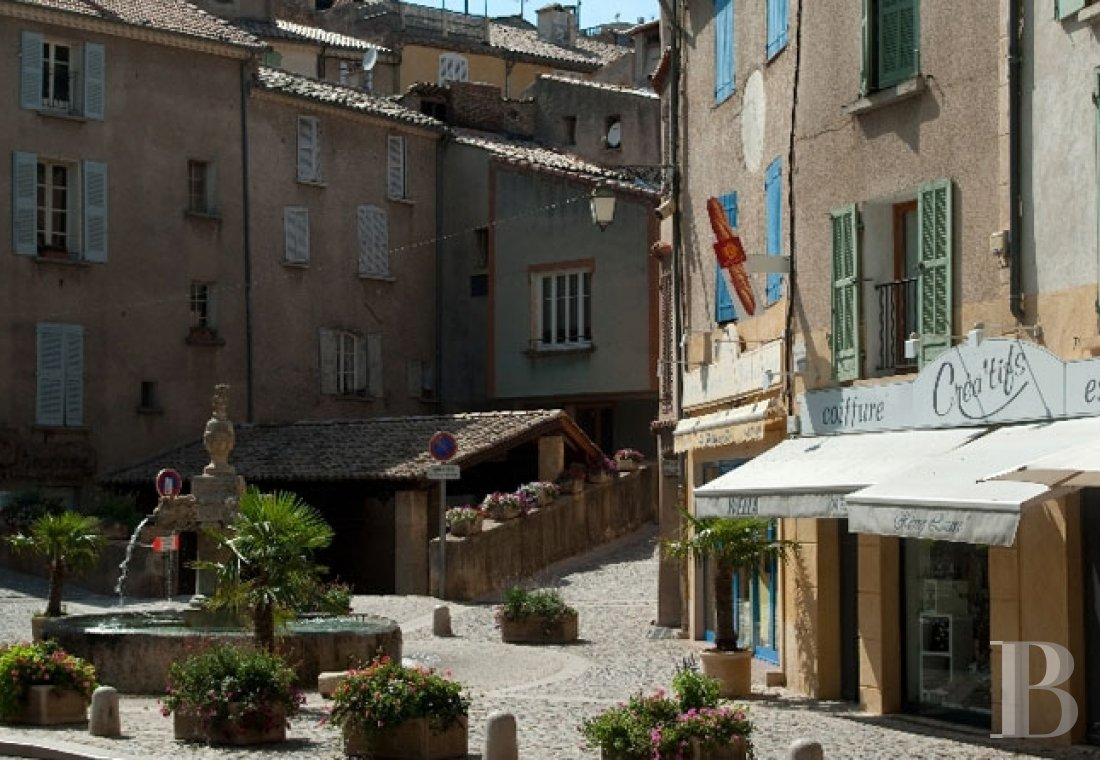 A 17th century mansion converted into a guest house in Riez and the Alpes de Haute-Provence region - photo  n°20