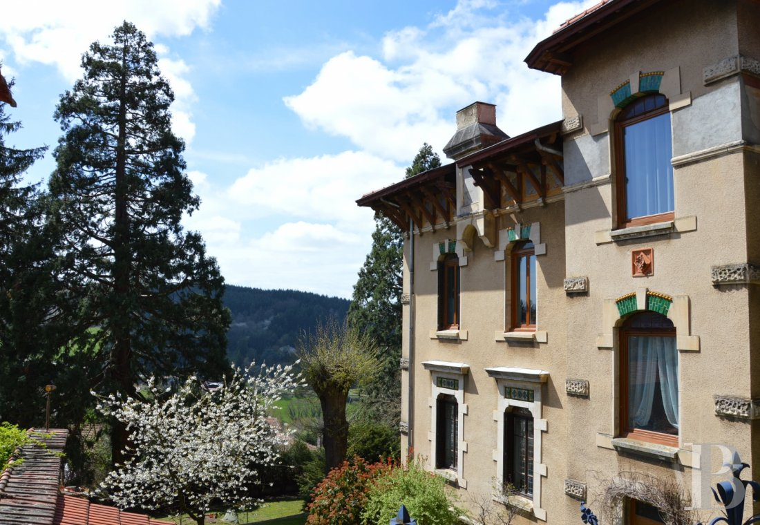 chateaux for sale France rhones alps castles chateaux - 14
