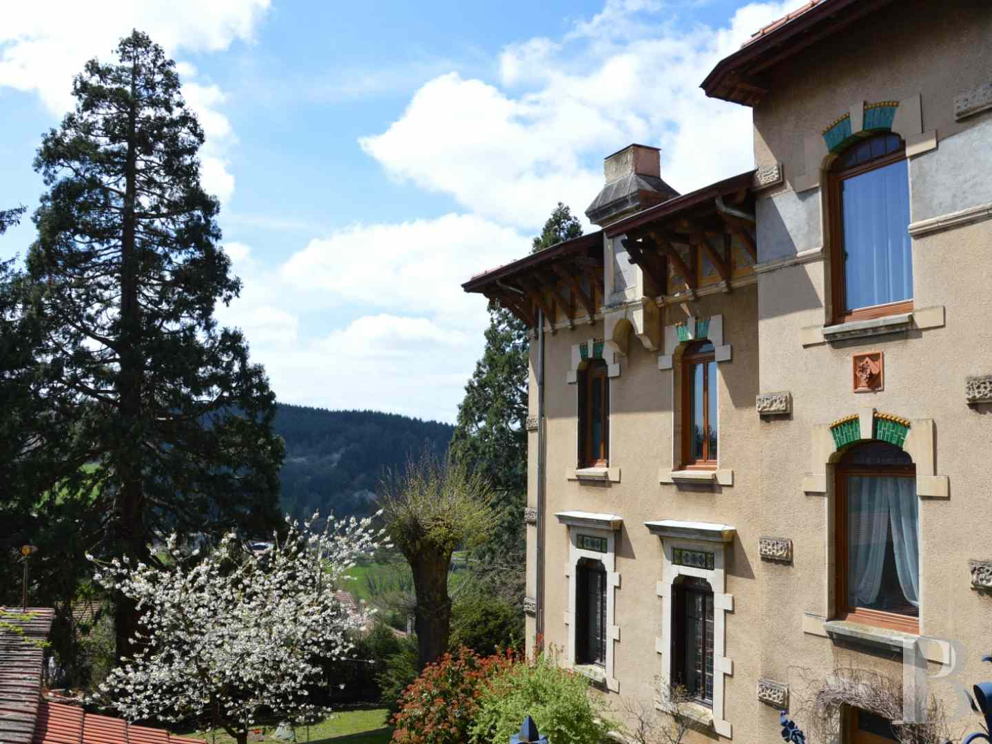 chateaux for sale France rhones alps castles chateaux - 14 zoom