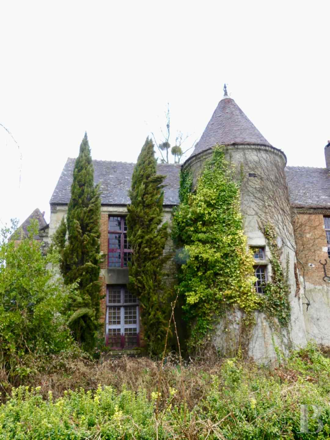 France mansions for sale center val de loire manors for - 2 zoom
