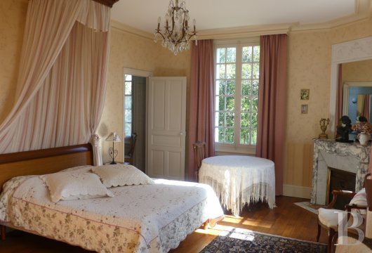 chateaux for sale France pays de loire   - 7