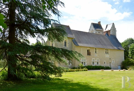 France mansions for sale pays de loire   - 8