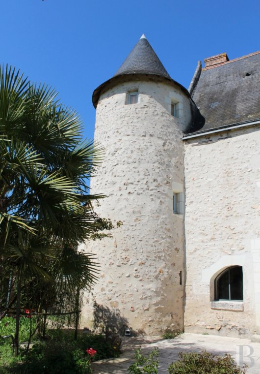 France mansions for sale center val de loire manors for - 3 mini