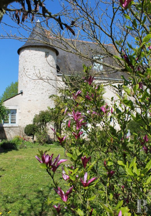 France mansions for sale center val de loire manors for - 2 mini