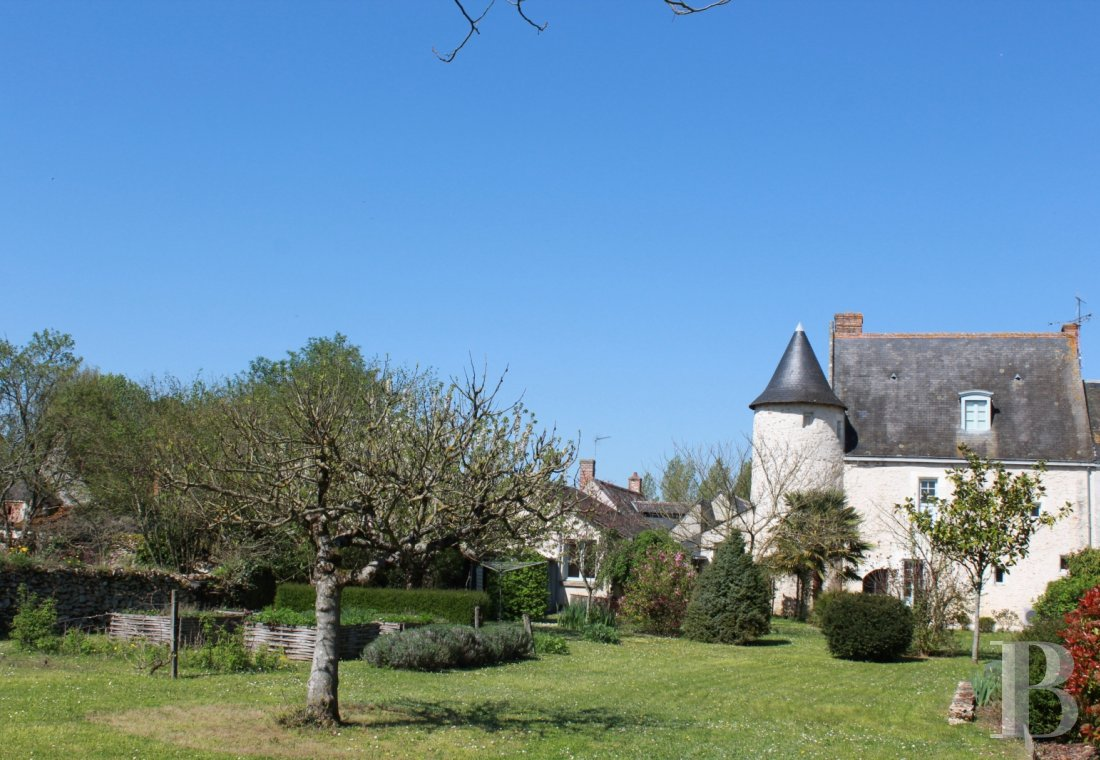 France mansions for sale center val de loire manors for - 1