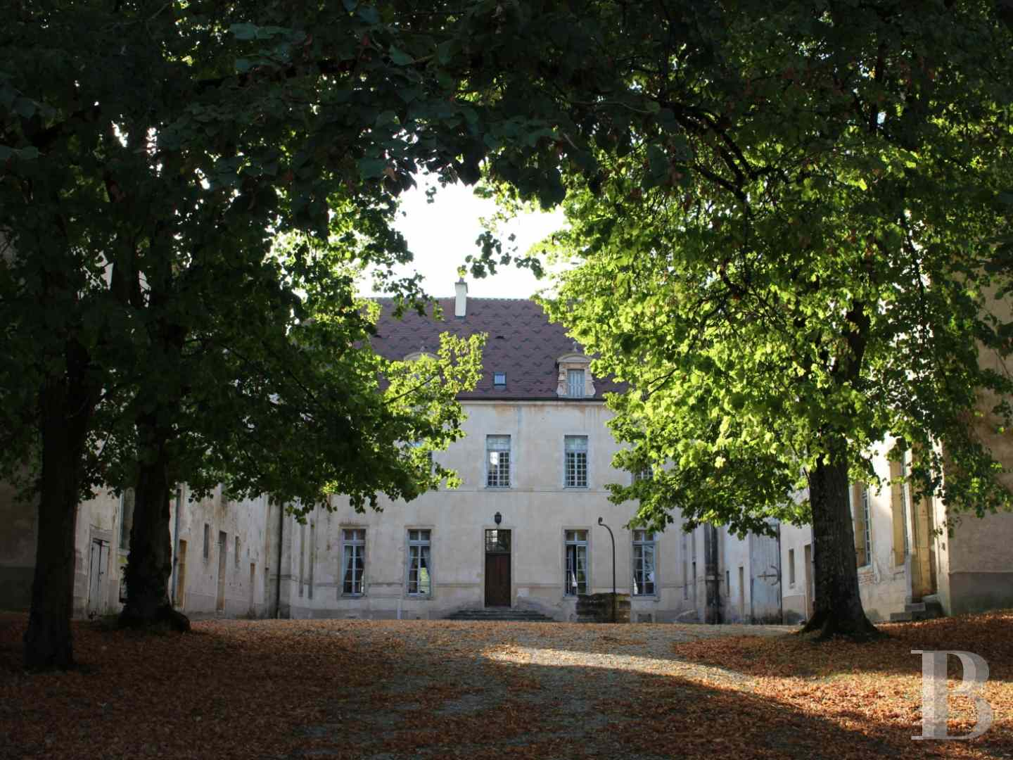 chateaux for sale France burgundy castles chateaux - 4 zoom