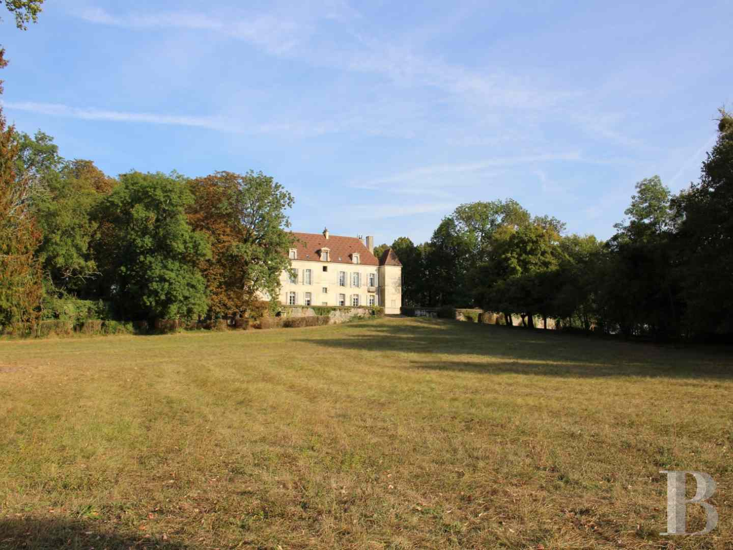 chateaux a vendre bourgogne chateau a - 1 zoom