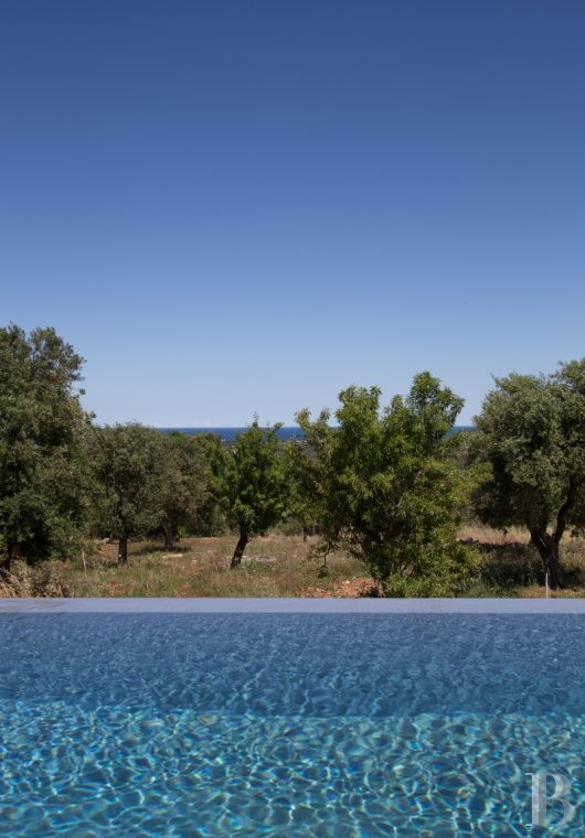 fLa Casa di Monti, between two seas and a field of ancient olive trees, perfect for holidays in Puglia in Southern Italy  - photo N°38