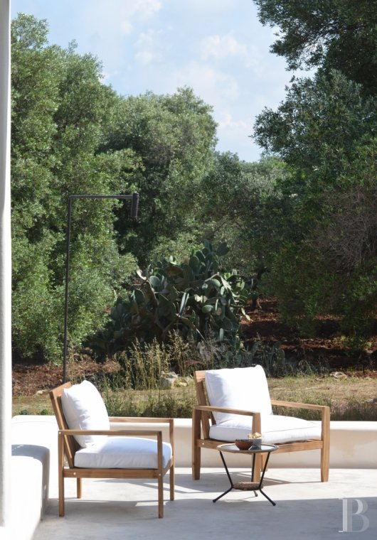 fLa Casa di Monti, between two seas and a field of ancient olive trees, perfect for holidays in Puglia in Southern Italy  - photo N°19