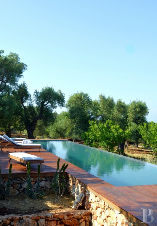fLa Casa di Monti, between two seas and a field of ancient olive trees, perfect for holidays in Puglia in Southern Italy  - photo N°2