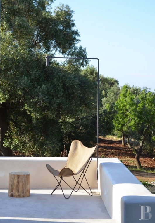 fLa Casa di Monti, between two seas and a field of ancient olive trees, perfect for holidays in Puglia in Southern Italy  - photo N°7
