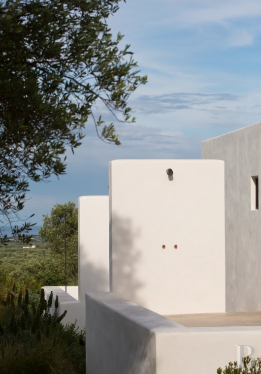 The Casa di Monti, between two seas and a field of ancient olive trees, perfect for holidays in Puglia in Southern Italy  - photo  n°5
