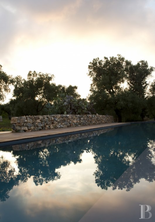 The Casa di Monti, between two seas and a field of ancient olive trees, perfect for holidays in Puglia in Southern Italy  - photo  n°41