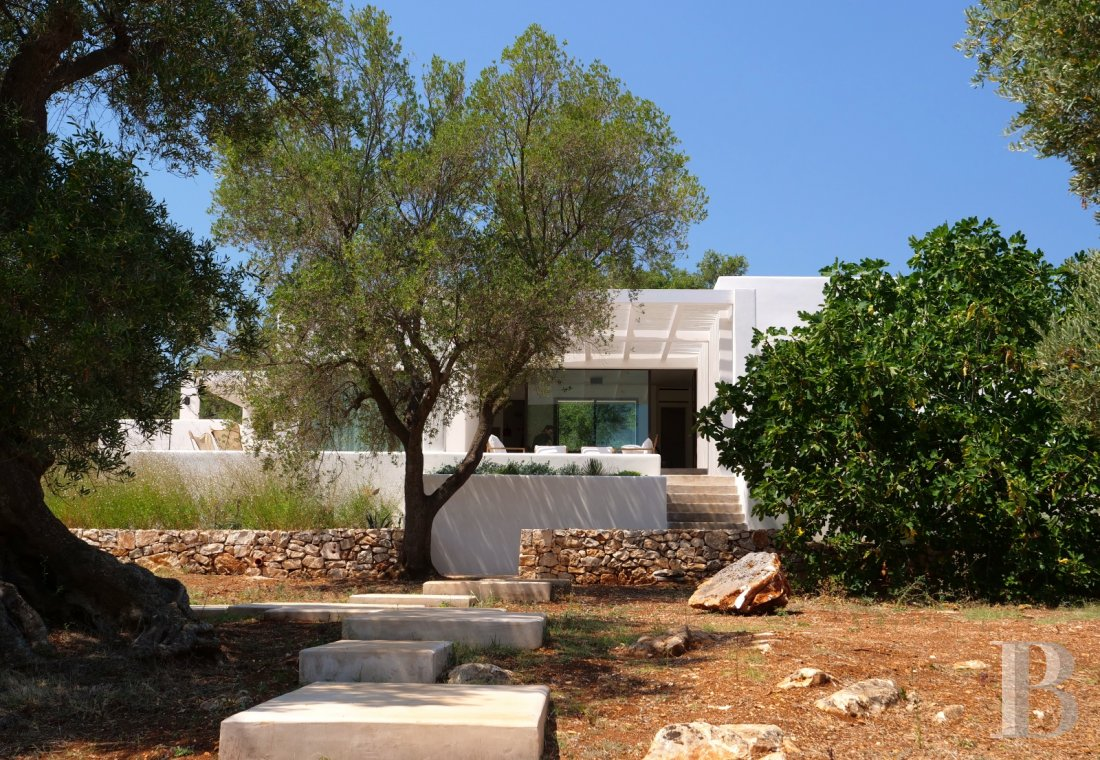 fLa Casa di Monti, between two seas and a field of ancient olive trees, perfect for holidays in Puglia in Southern Italy  - photo N°8
