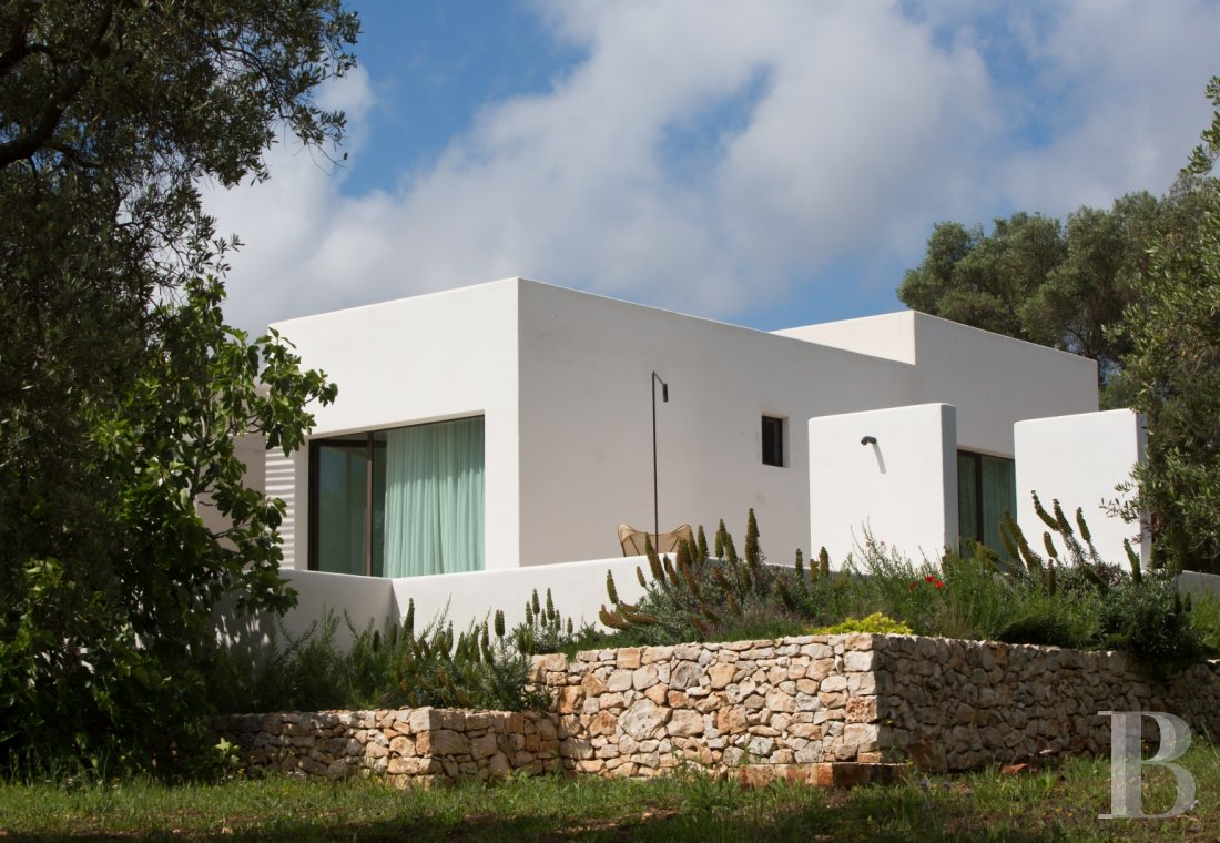 The Casa di Monti, between two seas and a field of ancient olive trees, perfect for holidays in Puglia in Southern Italy  - photo  n°1