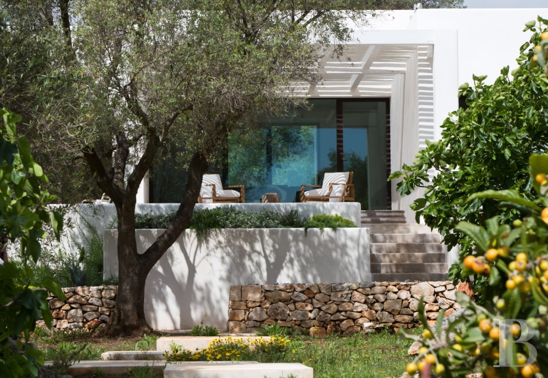 The Casa di Monti, between two seas and a field of ancient olive trees, perfect for holidays in Puglia in Southern Italy  - photo  n°25