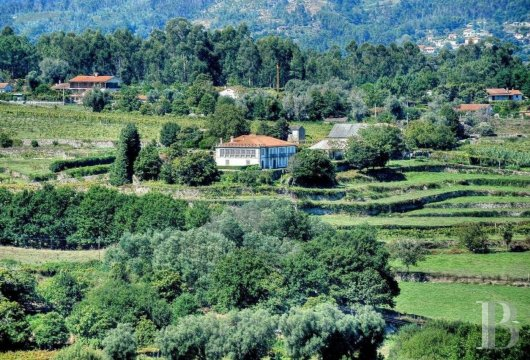 An 18th century family estate surrounded by lands and vineyards in the north of Portugal  - photo  n°31