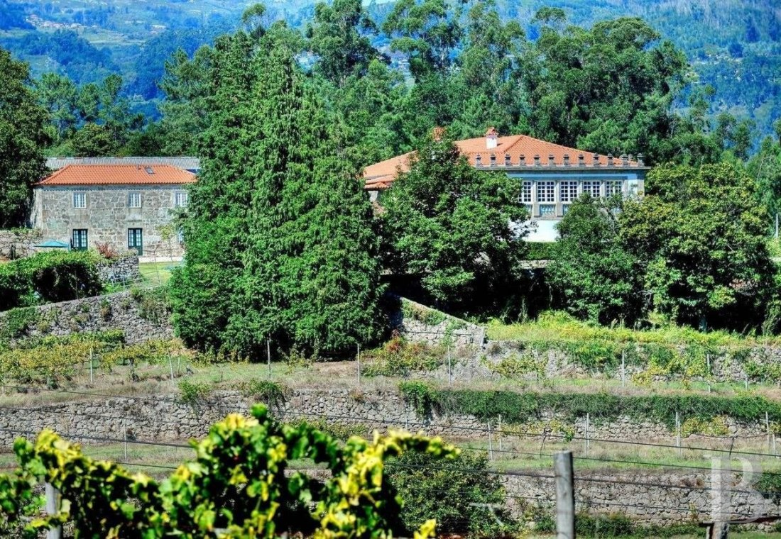 An 18th century family estate surrounded by lands and vineyards in the north of Portugal  - photo N°7