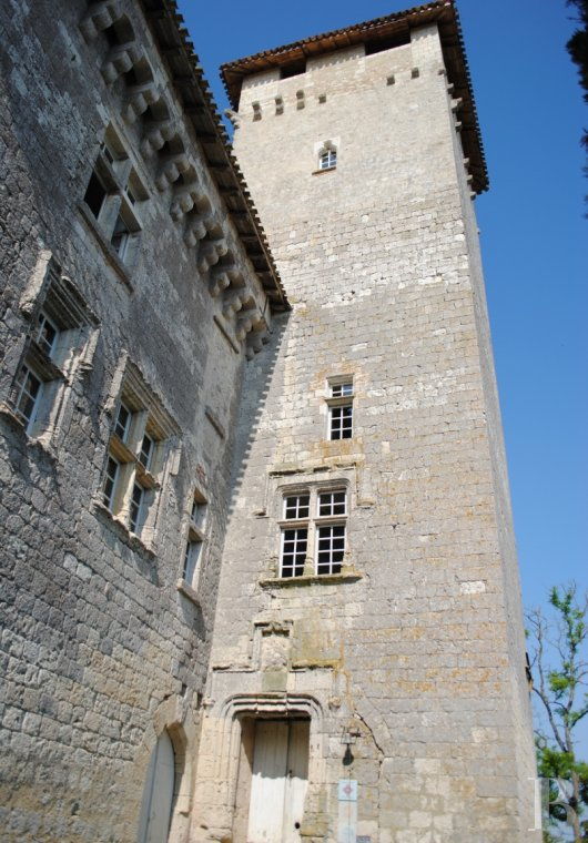 chateaux for sale France midi pyrenees   - 3