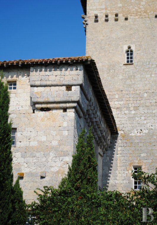 chateaux for sale France midi pyrenees   - 2