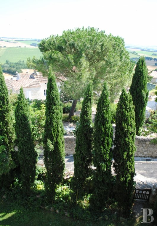 chateaux for sale France midi pyrenees   - 16