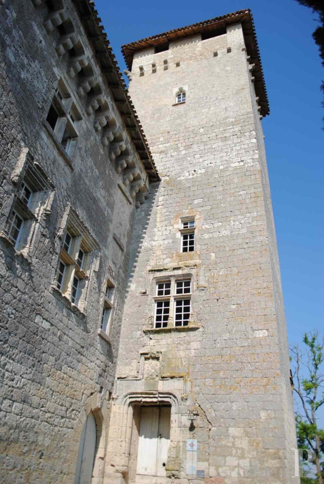 chateaux for sale France midi pyrenees castles chateaux - 3 zoom