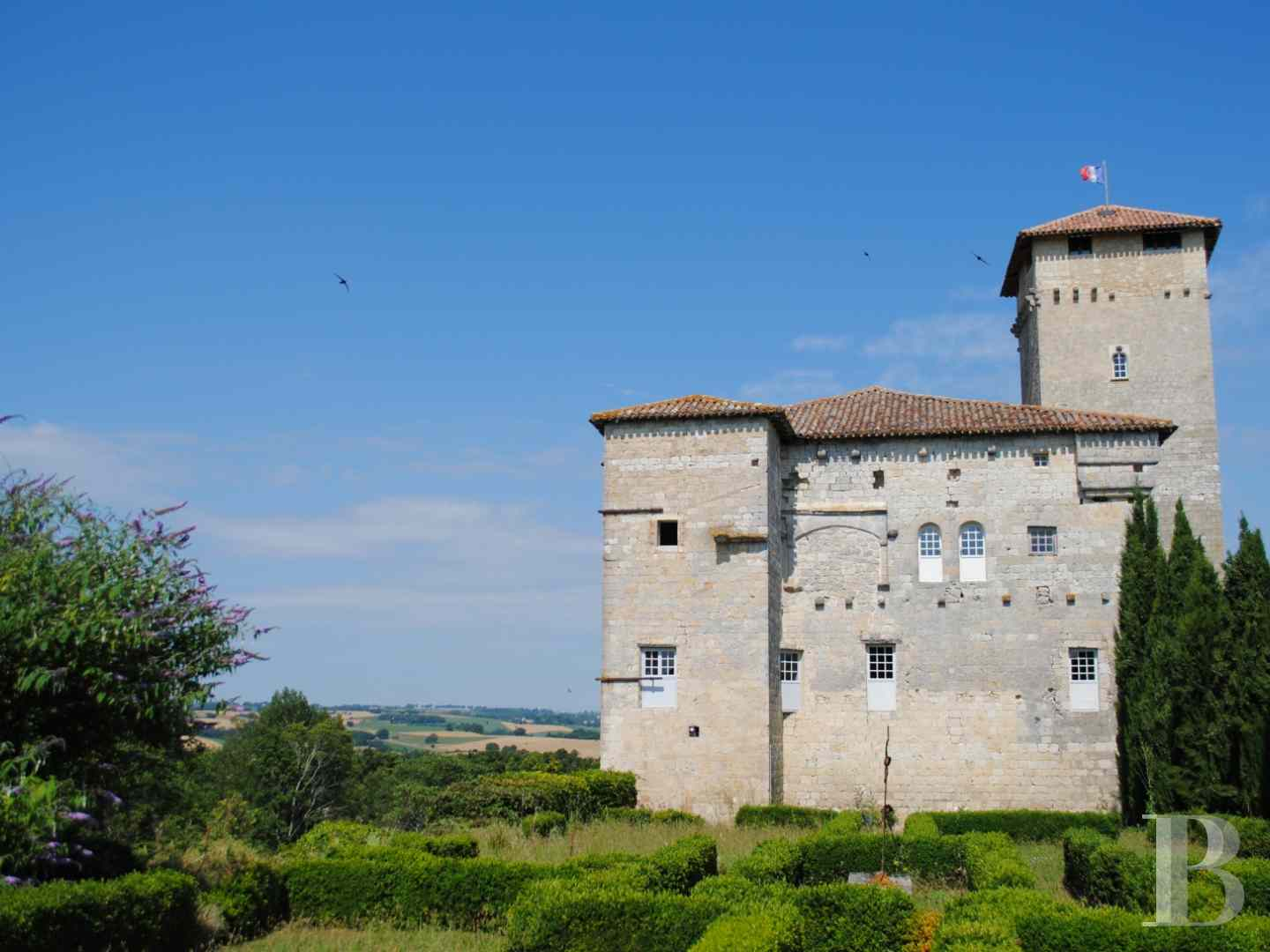 chateaux for sale France midi pyrenees castles chateaux - 1 zoom