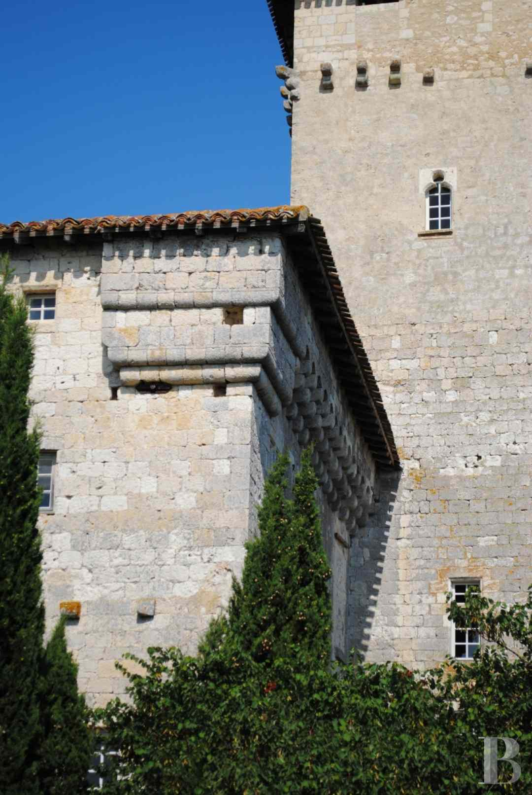 chateaux for sale France midi pyrenees castles chateaux - 2 zoom