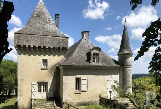 chateaux for sale France aquitaine castles chateaux - 6