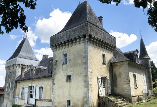 chateaux for sale France aquitaine castles chateaux - 4 mini
