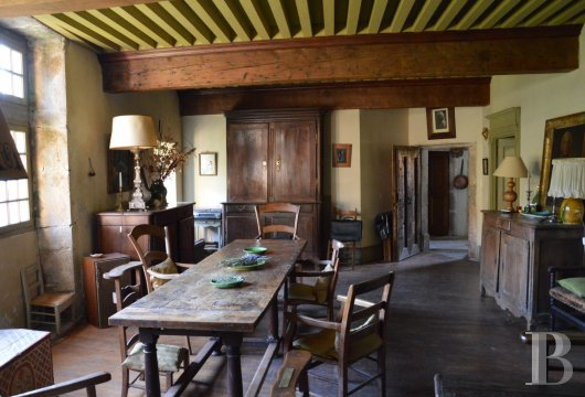 chateaux for sale France rhones alps   - 10